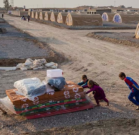 Iraq children transport relief items in Hasansham camp, Iraq